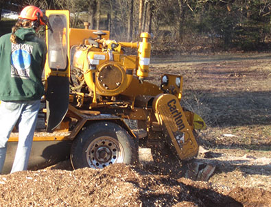 Stump Grinding Bucks Montgomery County